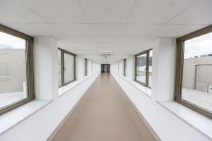 Zdjęcie numer 1 - galeria: Wawel zainwestował ponad 100 mln zł w nowy zakład i zwiększył moce o 20 proc. (zdjęcia)