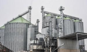 Feerum rozpoczęło suszenie kukurydzy