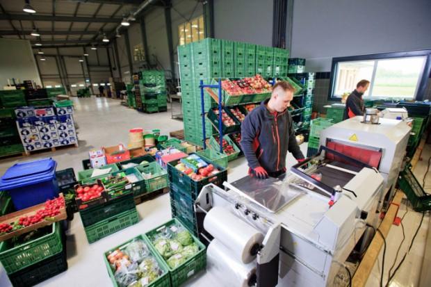 Hurtownia warzyw i owoców Bukat przejmuje firmę z Białorusi