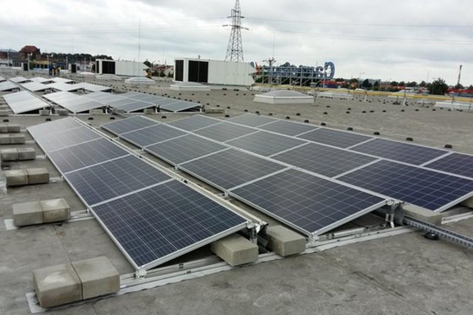 Carrefour testuje w Zgorzelcu panele fotowoltaiczne i turbiny wiatrowe