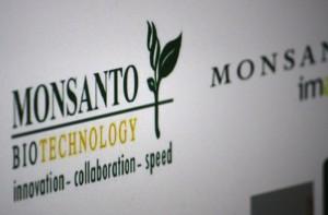 Monsanto zwiększa sprzedaż i zyski