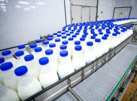 75 proc. mleczarni w dobrej i bardzo dobrej kondycji finansowej (raport)