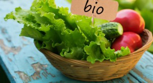 Wzrosła liczba producentów ekologicznych