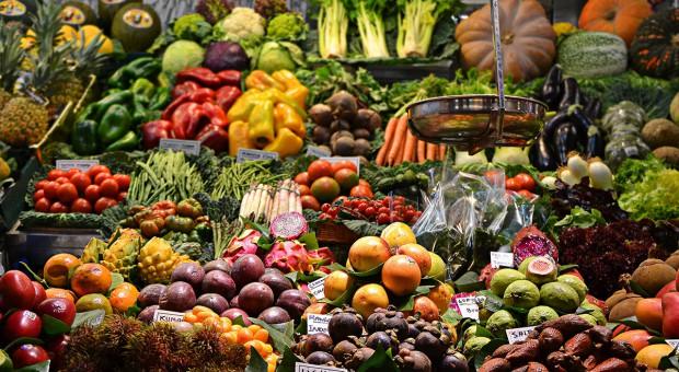 Biohandel w wiÄ™kszym formacie - wywiad z prezesem Organic Farma Zdrowia
