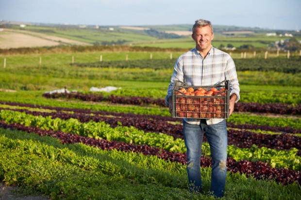 Dziś jeden rolnik żywi średnio 129 osób