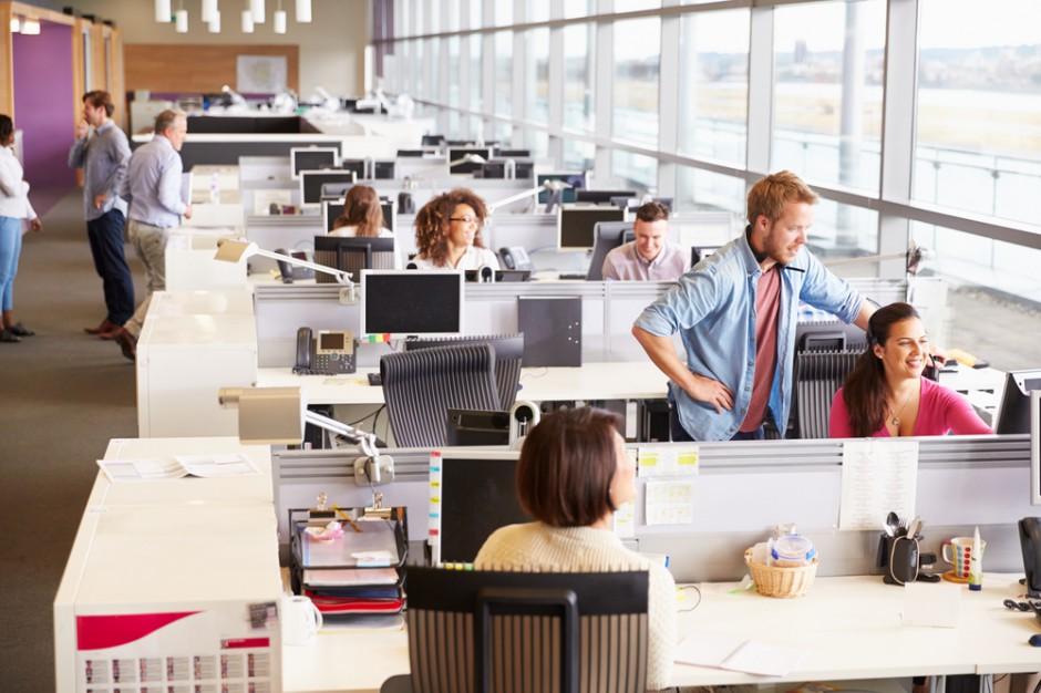 W open space efektywność pracowników spada  o 15 proc.