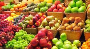Trwają prace nad technologią uzyskiwania proszków owocowych