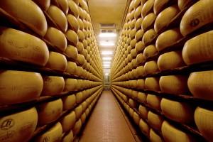 Projekt listu EDA dotyczącego systemu interwencji na rynku mleka