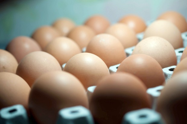 Włoscy rolnicy: co miesiąc brakuje w handlu 100 mln jajek