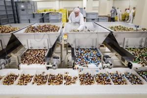 Zdjęcie numer 4 - galeria: FC Pszczółka dzięki nowej fabryce zawalczy o rynek wyrobów czekoladowych i eksport (zdjęcia)