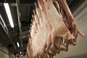 Rosja: Trudna sytuacja na rynku wieprzowiny