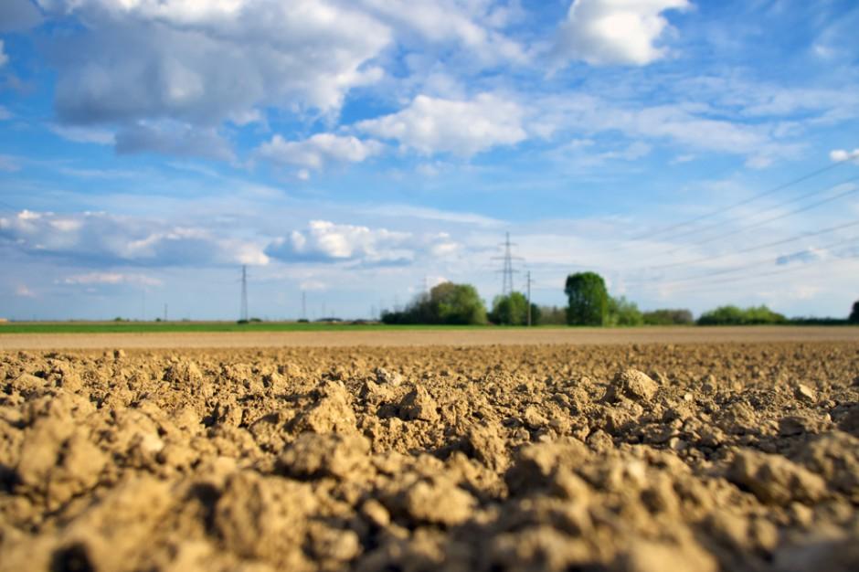 Tegoroczna susza osłabiła hiszpańskie rolnictwo