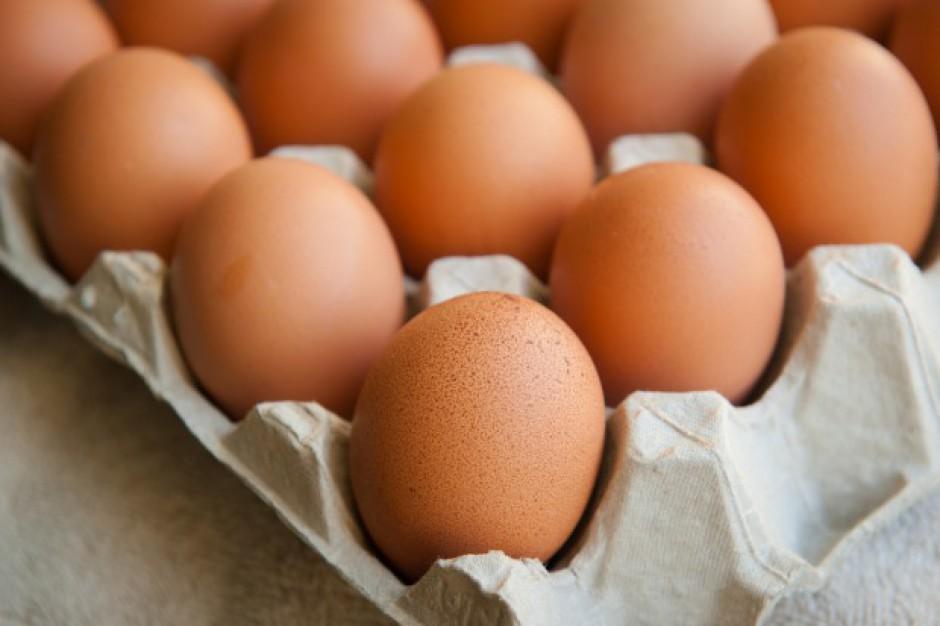 Analityk: Do końca roku nie należy spodziewać się spadku cen jaj w Polsce