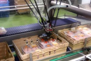 Zdjęcie numer 2 - galeria: Elastyczny system Ishida efektywnym wsparciem przetwórstwa drobiu