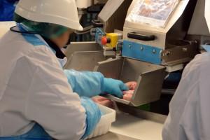 Zdjęcie numer 9 - galeria: Elastyczny system Ishida efektywnym wsparciem przetwórstwa drobiu