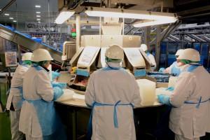 Zdjęcie numer 10 - galeria: Elastyczny system Ishida efektywnym wsparciem przetwórstwa drobiu