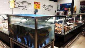 Zdjęcie numer 15 - galeria: Carrefour PRO: Interaktywne ekrany, Scan&Go, m-commerce i strefa restauracyjna (galeria)