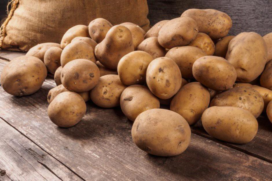 Raport IERiGŻ: Ceny ziemniaków na polskim rynku nadal są niskie