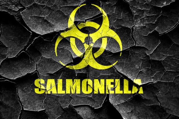 Salmonella w partii czekolad z Rossmanna