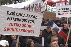 Branża mięsna i futerkowa w proteście przed Sejmem (wideo)