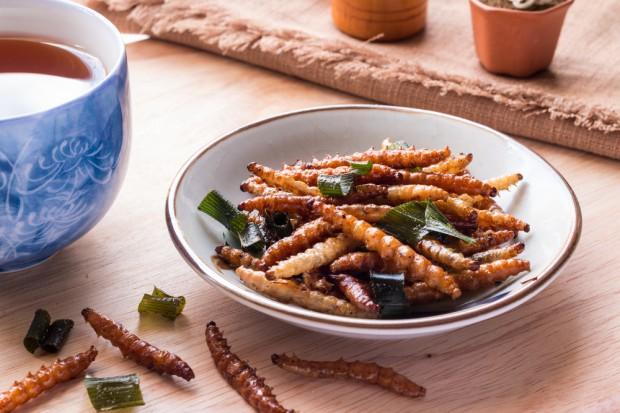 Weszły w życie nowe przepisy dotyczące jadalnych owadów