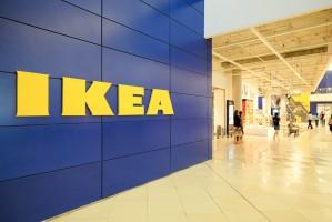 IKEA wycofała się z programu dobrostanowego CIWF dla mięsa drobiowego