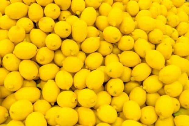 Kaliscy i warszawscy policjanci zapobiegli oszustwu wyłudzenia 20 ton cytryn