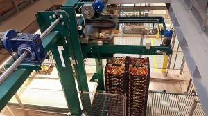 Zdjęcie numer 8 - galeria: Rajpol: Dostawy naszych owoców do Lidla generują ¼ obrotów firmy (galeria zdjęć)