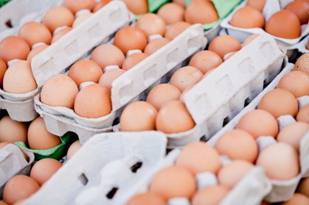IERiGŻ: W grudniu jaja przestały drożeć