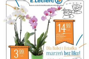 E.Leclerc w 2018 r. wprowadza nową identyfikację graficzną katalogów