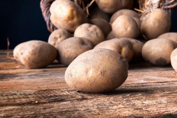 Raport IERiGŻ: Ceny ziemniaków w Polsce nadal są niskie