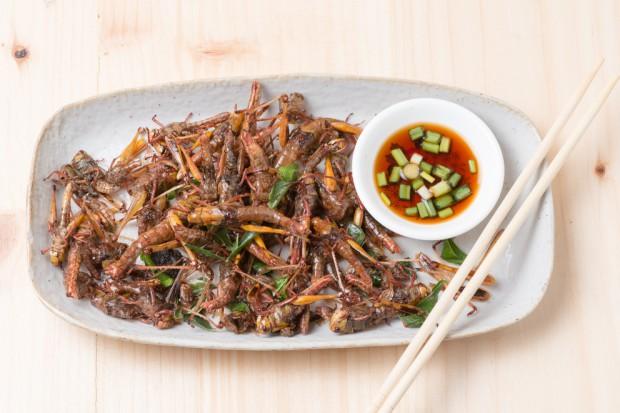 Większość Europejczyków nie uważa owadów za żywność