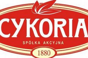 Cykoria: Polacy są tradycjonalistami i lubią znane smaki
