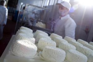 GDT: Silny wzrost notowań przetworów mlecznych