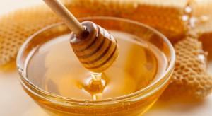 M Food: rynek miodu i nietypowe zachowanie cen miodu