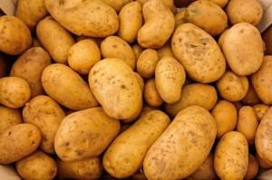 Analiza IERiGŻ: Ceny ziemniaków w Polsce nadal są niskie
