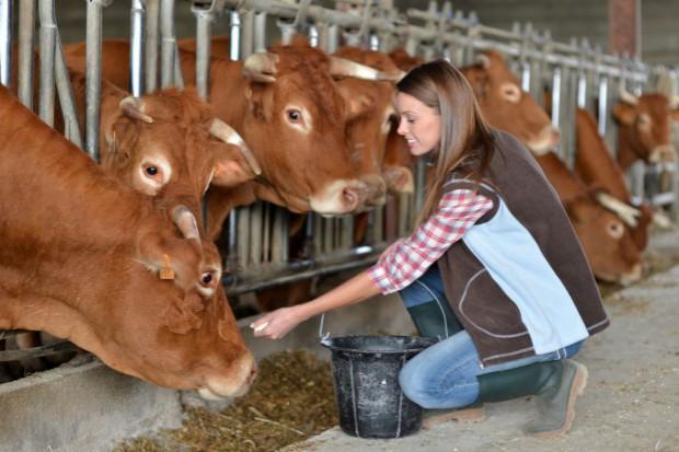 Ceny mleka spadły w styczniu o blisko 7 proc.