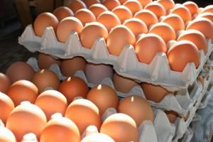 Kolejny ukraiński producent jaj z zezwoleniem na eksport do UE
