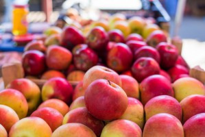 Ceny jabłek stabilne. Jednak wyższe niż przed rokiem - Bronisze