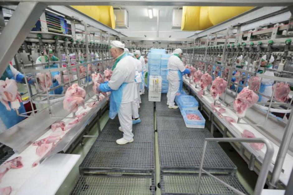Zakład Drobiarski w Stasinie zwiększa wydajność do 600 tys. indyków miesięcznie