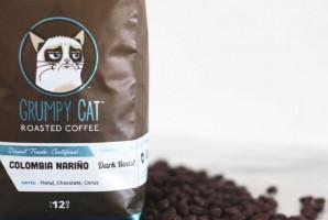 Grumpy Cat, czyli kot celebryta, wygrał z dystrybutorem kawy