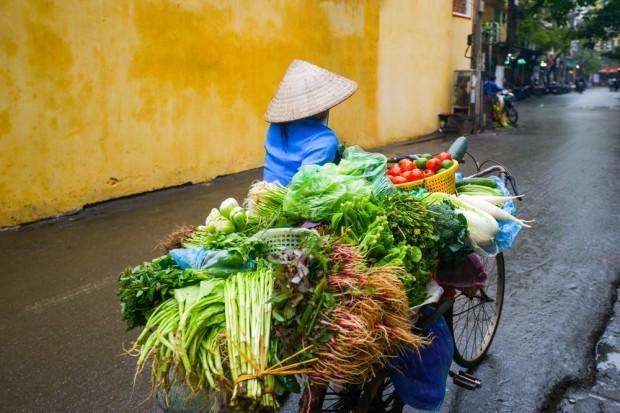 BZ WBK: Wietnam to szansa dla polskich firm np. mleczarskich, mięsnych, ale i sporo wyzwań