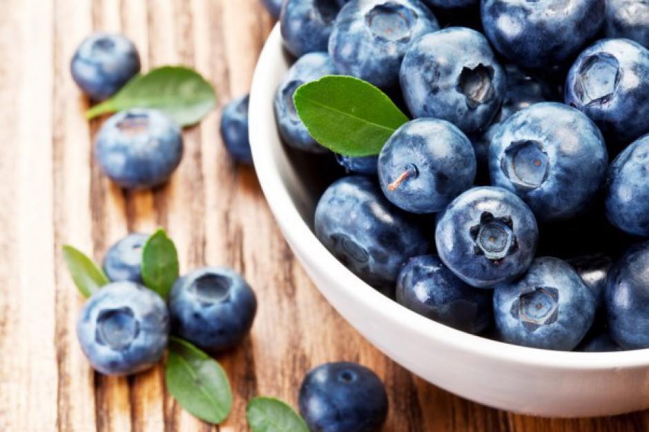 Polskie borówki trafiają na rynki zagraniczne jako owoce deserowe
