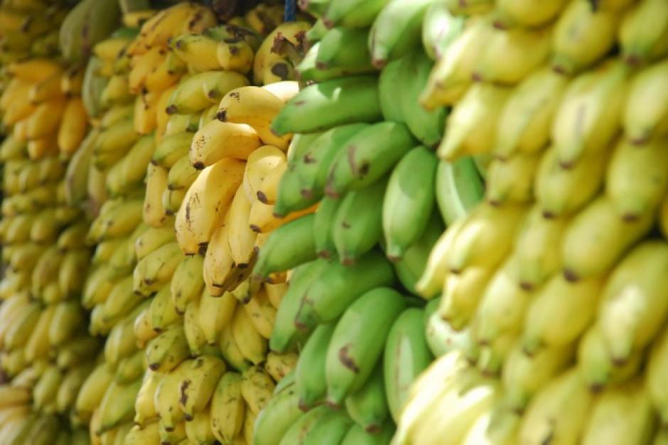 Polska kupuje coraz więcej bananów
