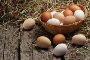 KIPDiP W strukturze chowu jaj w Polsce zajdą zmiany, ale nie tak duże jak chcieliby ekolodzy