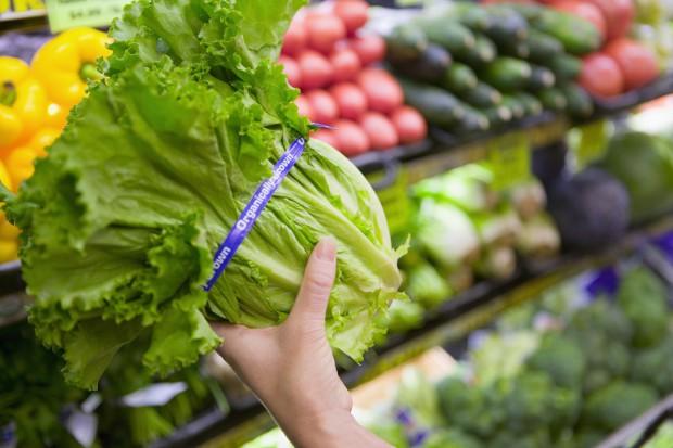 Jakie zmiany wprowadza nowa wersja standardu IFS Food v.6.1?