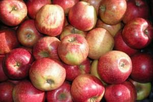 Bronisze: Ceny jabłek w ostatnich tygodniach ceny nie wzrosły