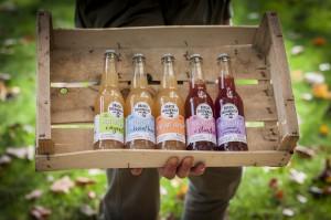 Bracia Sadownicy - nowa marka jabłek i soków na polskim rynku z Kujaw