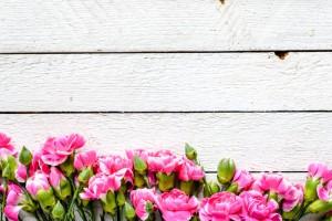 21 marca to Pierwszy Dzień Wiosny