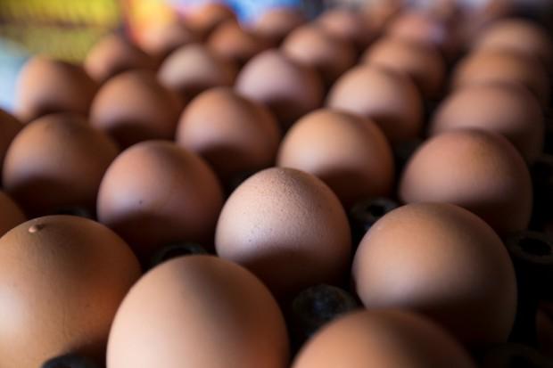 POLOmarket deklaruje gotowość wycofania ze swojej oferty jaj z chowu klatkowego
